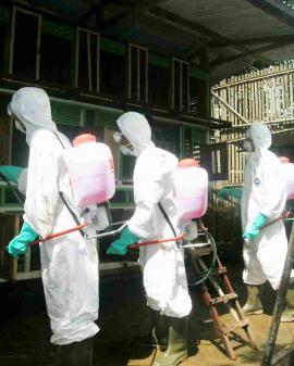 Prevención en Agentes biológicos Exposición