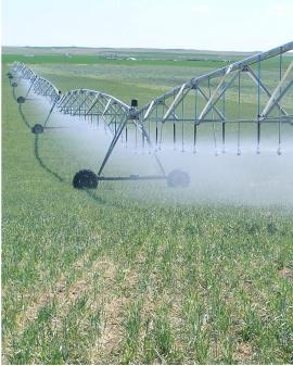 Operaciones auxiliares de riego en cultivos agrícolas